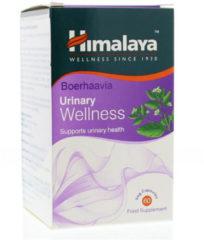 Himalaya Herbals Boerhaavia Urinary Capsules