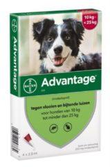 Advantage Hond 4 pip - Anti vlooien en luizenmiddel - 2.5 ml 10-25kg
