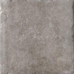 Cir N.Orleans Vloertegel 20x20cm 10.5mm Bourbon Str. Mat 1255675