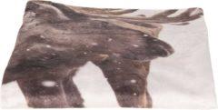 Plaid | 130*170 cm | Bruin | 100% Polyester | Rechthoekig | Rendier | Clayre & Eef | KT060.091
