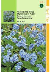 Blauwe Hortitops Zaden - Vergeet-Mij-Nietje Blue Ball (Myosotis alpestris)