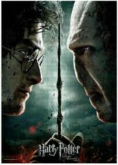 SD Toys Harry Potter: Harry Vs Voldemort Puzzle 1000p