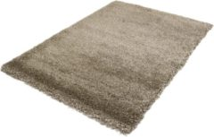 Basic Collection Hoogpolig Vloerkleed Shaggy Deluxe - Taupe -240x340 cm