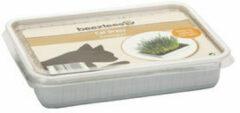 Beeztees Kattengras in Plastic Box 130 gram