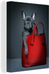 OneMillionCanvasses Canvas Schilderij Grappige dieren - Grappige bulldog in rode handtas canvas - 30x40 cm - Foto print op Canvas schilderij (wanddecoratie woonkamer / slaapkamer)