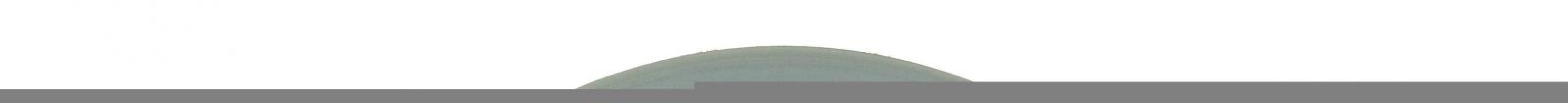 Afbeelding van Kongamek Dichte platte vrije wielen