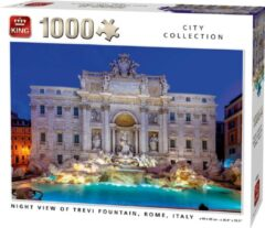 Witte King Puzzel 1000 Stukjes NIGHT VIEW OF TREVI FOUNTAIN, ROME, ITALY