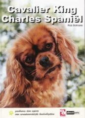 Bruna Cavalier King Charles spaniël - Boek R. Bolmans (905821611X)