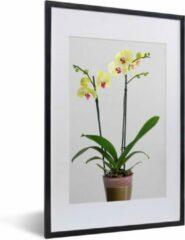 PosterMonkey Foto in lijst - De gele orchideeën in een bloempot fotolijst zwart met witte passe-partout middel 40x60 cm - Poster in lijst (Wanddecoratie woonkamer / slaapkamer)