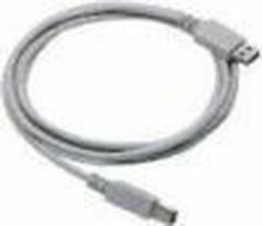 Datalogic Straight Cable - Type A USB USB-kabel 2 m
