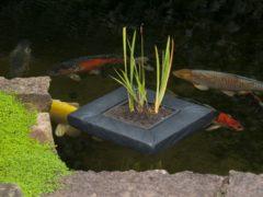 Ubbink SwimPlant drijvende plantentas - Vierkant 40 x 40 cm