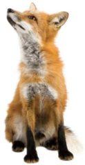 Bruine KEK Amsterdam Forest Friends: Fox - Muursticker - Multicolor
