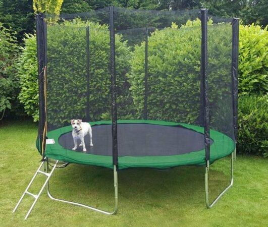 Afbeelding van Viking Sports Trampoline 305 cm groen - met veiligheidsnet & ladder - tot 120 kg