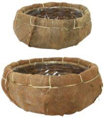 Massamarkt Mand kokosvezel set a 2