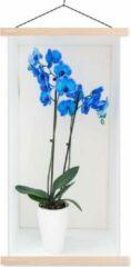 TextilePosters De felblauwe orchideeën in een bloempot schoolplaat platte latten blank 60x120 cm - Foto print op textielposter (wanddecoratie woonkamer/slaapkamer)