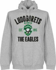 Retake Ludogorets Established Hoodie - Grijs - XL
