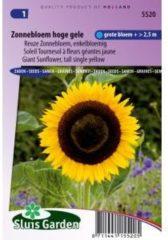 Sluis Garden Reuze Zonnebloem enkelbloemig bloemzaden - Zonnebloem hoge gele