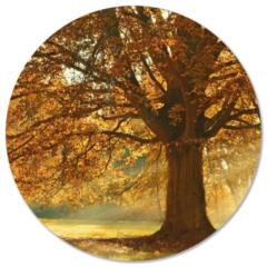 Beige Label2X Muurcirkel klein herstboom - Ø 30 cm - Dibond (binnen & buiten)