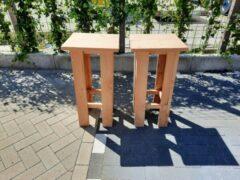 Rode KSM-Steigerhout 2 stuks barkruk Easy van Douglas hout, voor bij een bar tafel / sta tafel