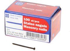 HJZ Stalen nagels blauw bolkop 2.0x40mm 100 stuks