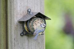 Vogelbescherming nederland pindakaaspothouder wicklow (metaaldraad)