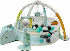 Blauwe Tryco Ball Pit Activity Gym -Frog
