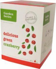 Groene Veenbessen Thee - Delicious groen Cranberry - Garden Series Box (48 piramidebuiltjes)