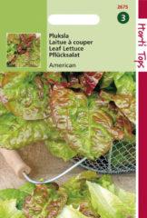 Rode Hortitops Zaden - Pluksla Amerikaanse Roodrand