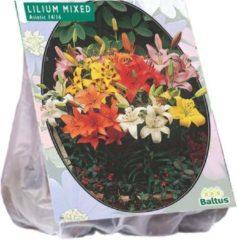 Baltus Lilium (Lelie) bloembollen - Mixed - 2 x 5 stuks