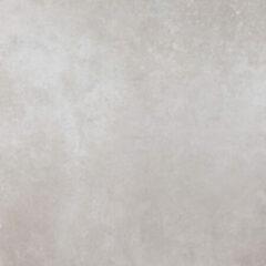 Zilveren Abk Imoker Factory Vloertegel 60x60cm 9mm vorstbestendig gerectificeerd Silver Mat 1538628