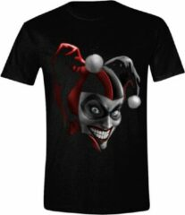 Zwarte DC Comics Heren T-shirt Maat XL