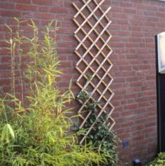 Bruine Nature Latwerk voor tuin 100x200 cm bamboe 6040722