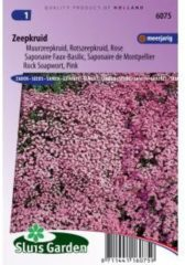 Roze Sluis Garden - Zeepkruid Rose-Pink (Saponaria)