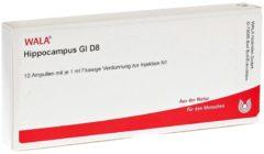 Hippocampus GL D 8 Ampullen
