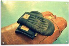 Bruine KuijsFotoprint Tuinposter – Ouderwetse Handschoenen met Boksbal - 90x60cm Foto op Tuinposter (wanddecoratie voor buiten en binnen)