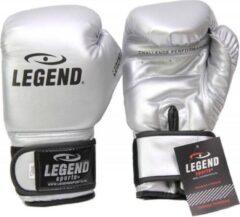 Legend Sports bokshandschoenen Powerfit & Protect zilver mt 12oz
