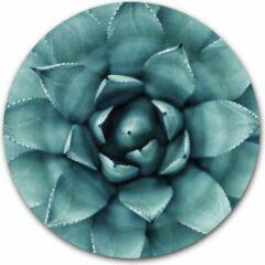 Blauwe Ronde muursticker Agave Plant - WallCatcher   40 cm behangsticker wandcirkel Cactus   Herpositioneerbare wandsticker muurcirkel