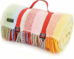 Tweedmill Picknickkleed Rainbow