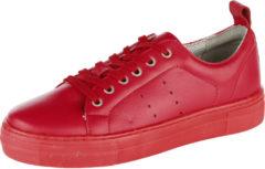 Donkerrode Sneaker Filipe Shoes Berry