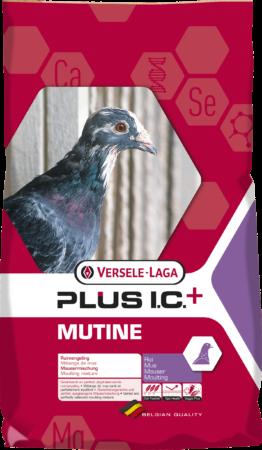 Afbeelding van Versele-Laga I.C.+ Mutine Plus Ic-Rui - Duivenvoer - 20 kg