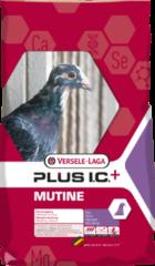 Versele-Laga I.C.+ Mutine Plus Ic-Rui - Duivenvoer - 20 kg