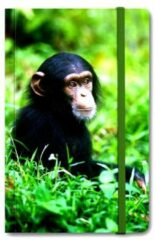 Lanzfeld (museumwebshop.com) Notitie boekje A6, Baby Chimpansee