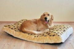 SILVIO DESIGN Hundebett und Katzenbett »Silvio«