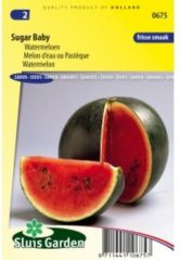 Groene Sluis Garden - Watermeloen Sugar Baby