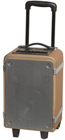 Afbeelding van Denver Electronics TSP-150 - Bluetooth trolley speaker with 15W output - Denver Electroni