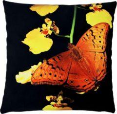 Decolenti – Brown Butterfly – Sierkussenhoes – Zwart - Oranje - Geel - Groen - 45cm x 45cm