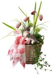 Gesteck mit Katze Tewa mehrfahrbig