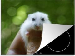 KitchenYeah Luxe inductie beschermer Baby hamster - 70x52 cm - Baby hamster close-up - afdekplaat voor kookplaat - 3mm dik inductie bescherming - inductiebeschermer