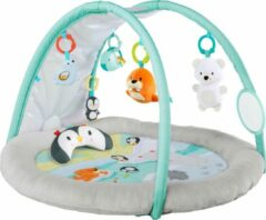 Bright starts Arctic Glow Light Show Playmat