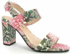Roze Floris van Bommel 85228